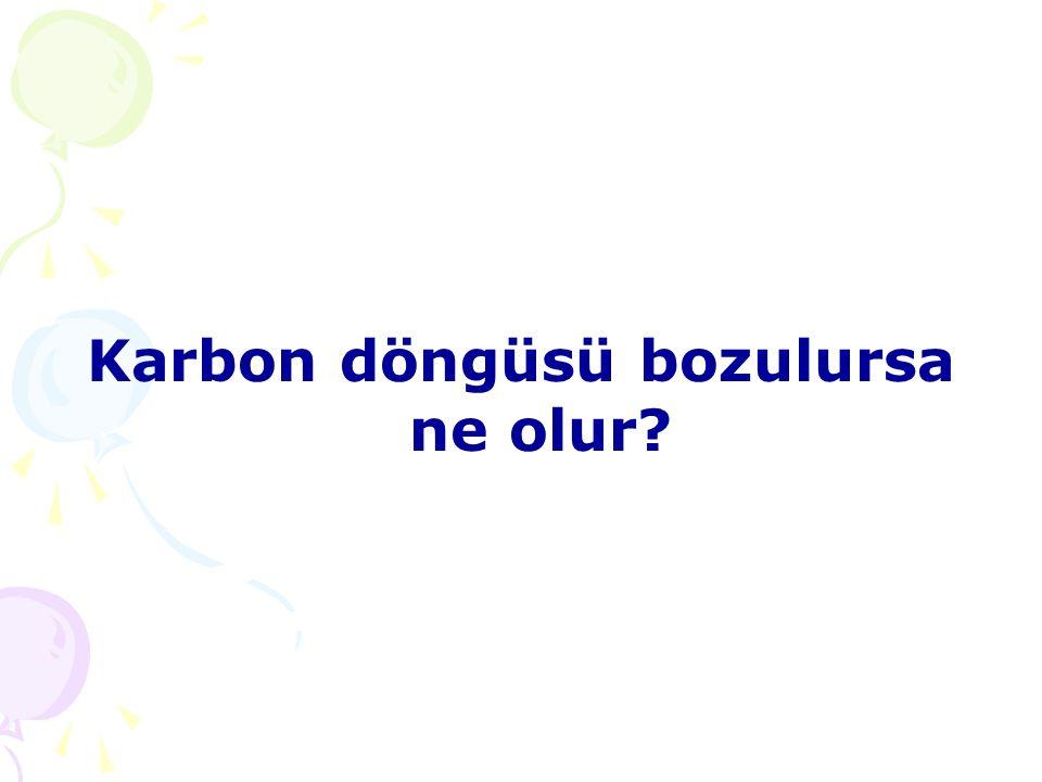 Karbon döngüsü bozulursa ne olur
