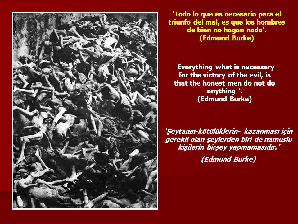 'Todo lo que es necesario para el triunfo del mal, es que los hombres de bien no hagan nada'. (Edmund Burke) Everything what is necessary for the vict
