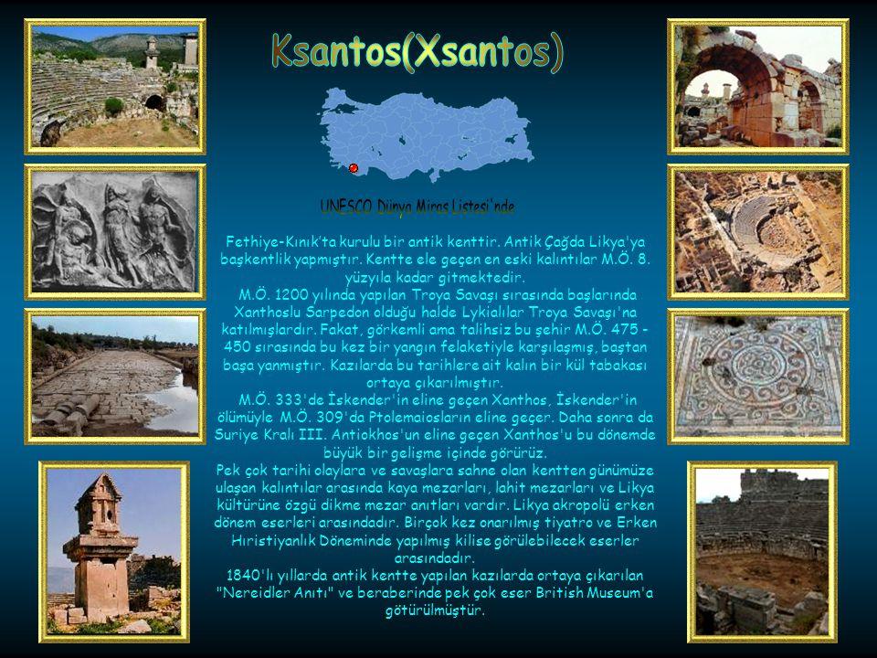 Muğla-Köyceğizde bulunmuştur. Antik Çağ'da bir liman kenti olan Kaunos günümüzde kıyıdan hayli içeride kalmıştır. Kaunos'la ilgili ilk tarihi bilgiler
