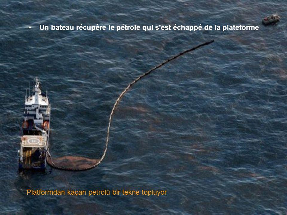 •Des barrages flottants ont été mis en place près de la côte Bariyerler sahile yakın konmuştur.