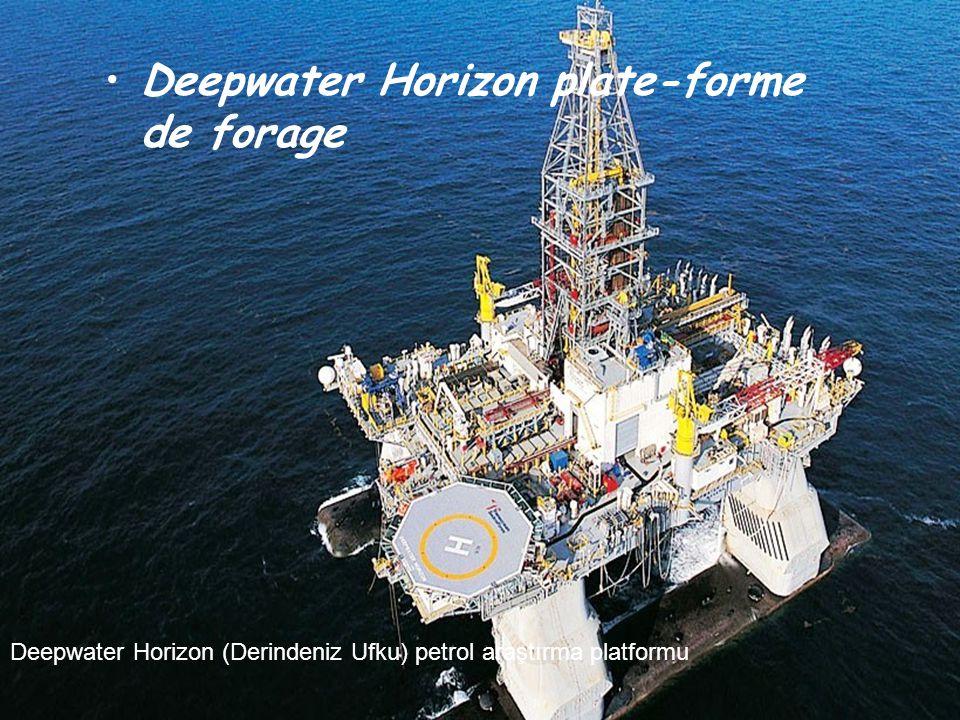 Source: du net Manuel & musical 02-05-2010 Derindeniz Ufku Fransızca'dan Çeviren: Dr. Umur Gürsoy, 17.08.2010 BP'ye göre, günde 800 bin litre petrol M