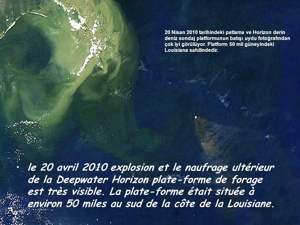 •Deepwater Horizon plate-forme de forage Deepwater Horizon (Derindeniz Ufku) petrol araştırma platformu