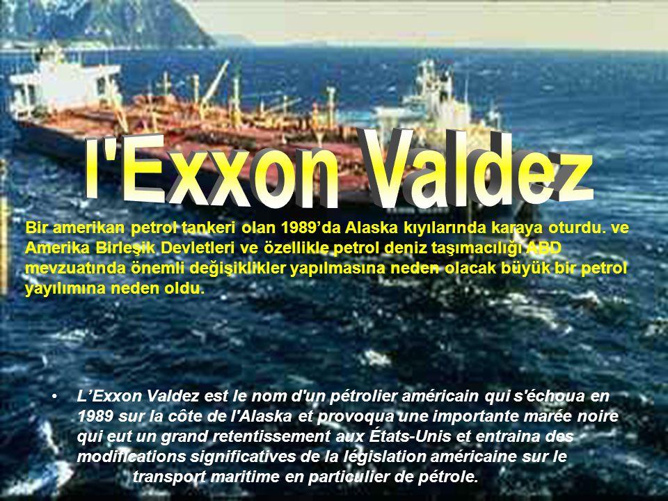 •L'énorme silo blanc d'une centaine de tonnes a été embarqué à bord d'une barge partie de Port Fourchon (Louisiane). BP a par ailleurs commencé à creu