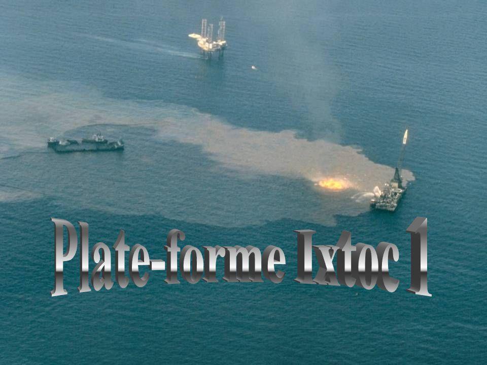 •Plus de 40 millions de litres de pétrole brut se répandent au large de l'Alaska. En tout, 2000 kilomètres de côtes sont touchés. On pensait que tout