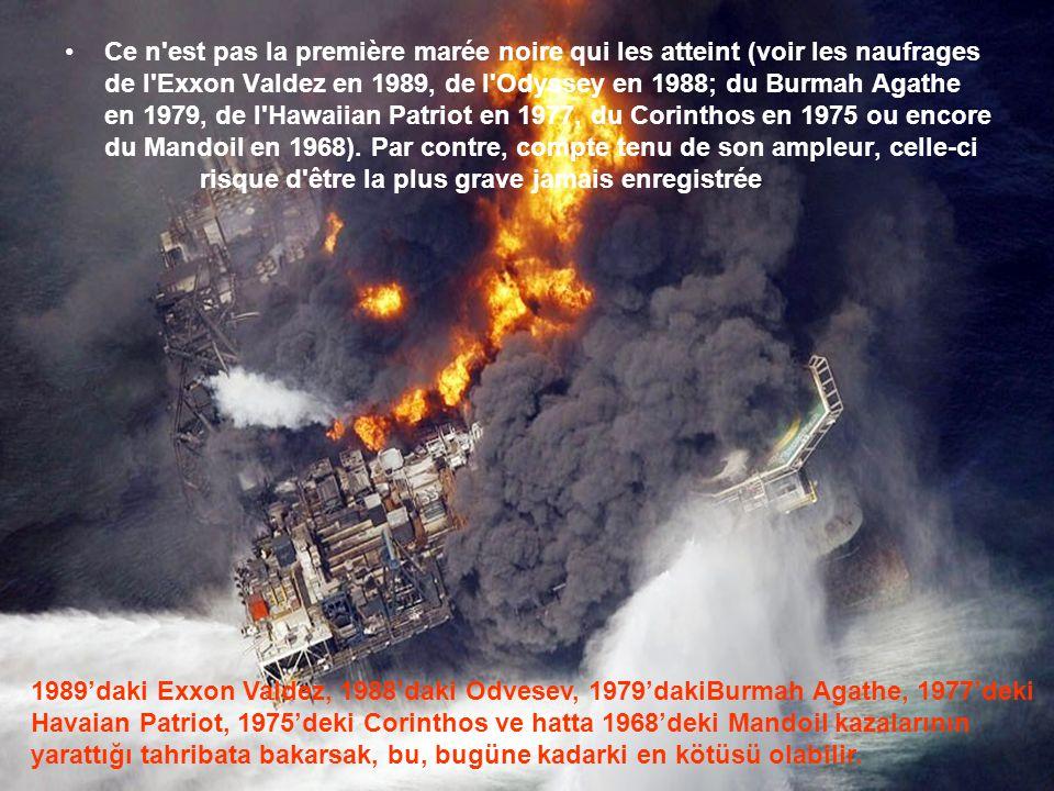 •L'explosion le 20 avril sur une plate-forme pétrolière du golfe du Mexique, a fait 17 blessés et 11 disparus. Des colonnes de flammes s'élèvent du de