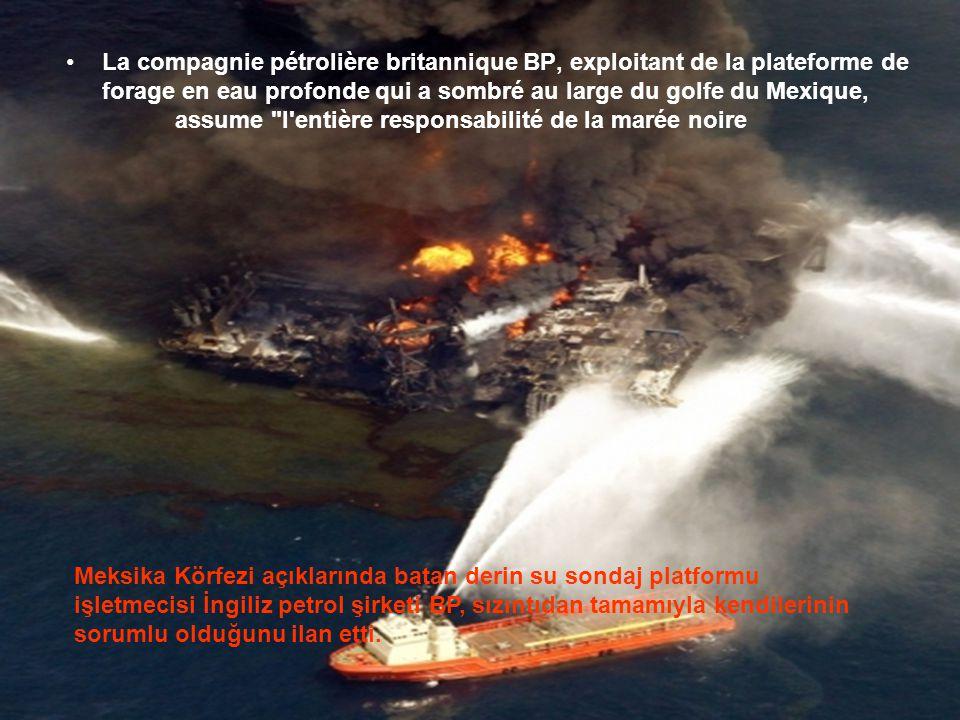 •Ce n'est pas la première marée noire qui les atteint (voir les naufrages de l'Exxon Valdez en 1989, de l'Odyssey en 1988; du Burmah Agathe en 1979, d