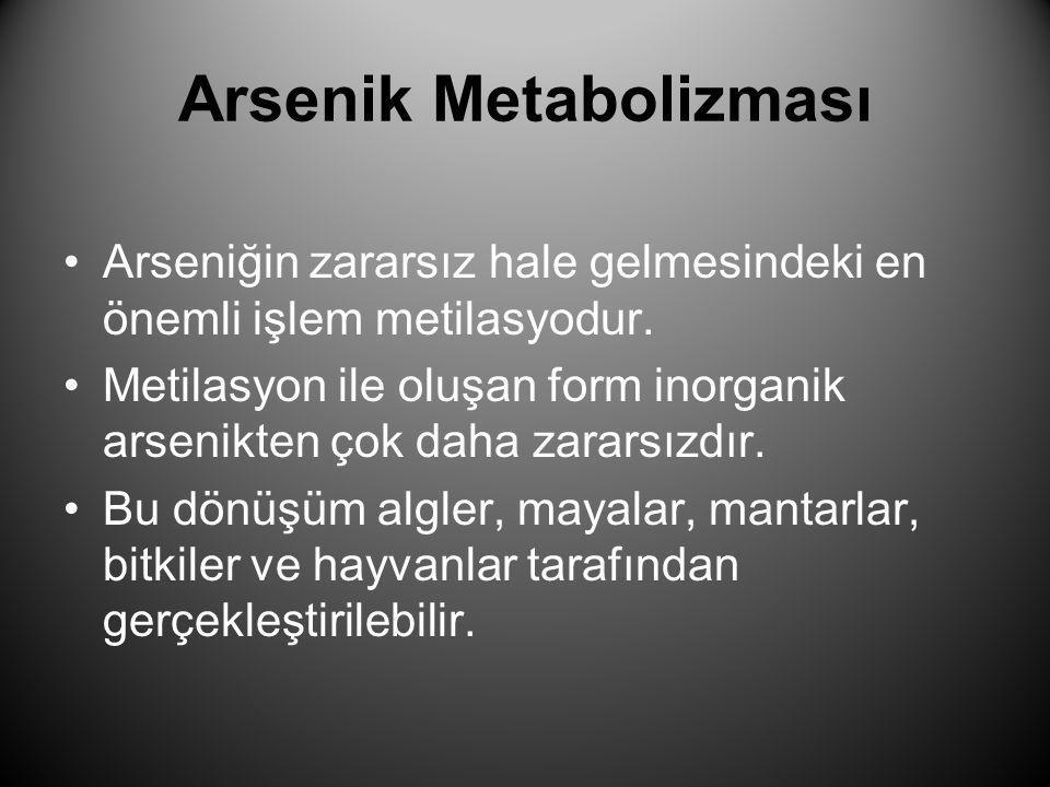 Arsenik Metabolizması •Arseniğin zararsız hale gelmesindeki en önemli işlem metilasyodur. •Metilasyon ile oluşan form inorganik arsenikten çok daha za