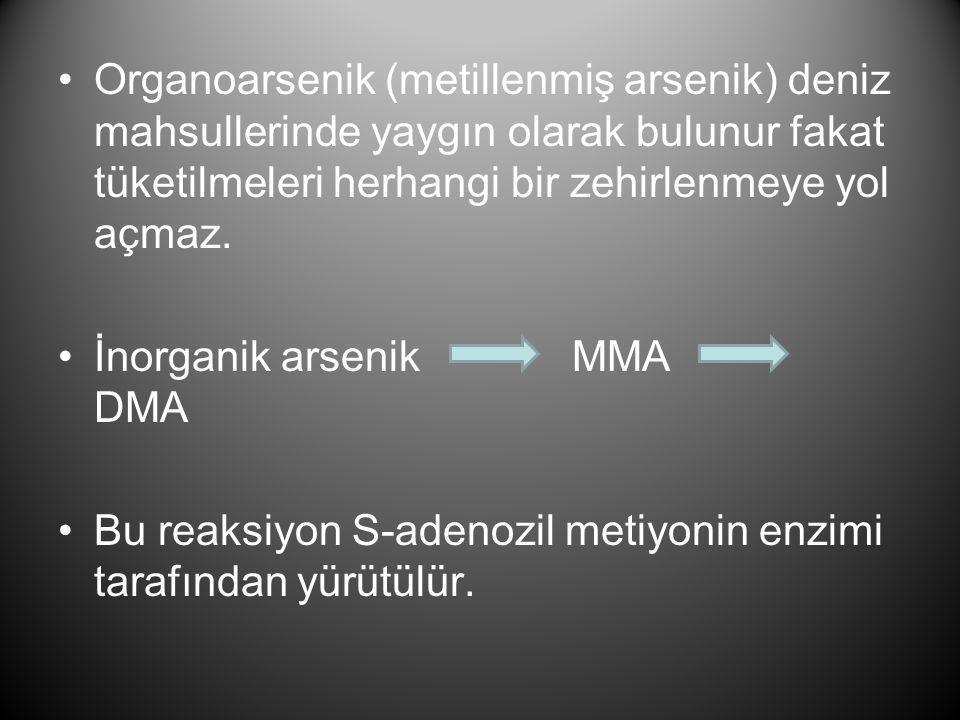 •Organoarsenik (metillenmiş arsenik) deniz mahsullerinde yaygın olarak bulunur fakat tüketilmeleri herhangi bir zehirlenmeye yol açmaz. •İnorganik ars