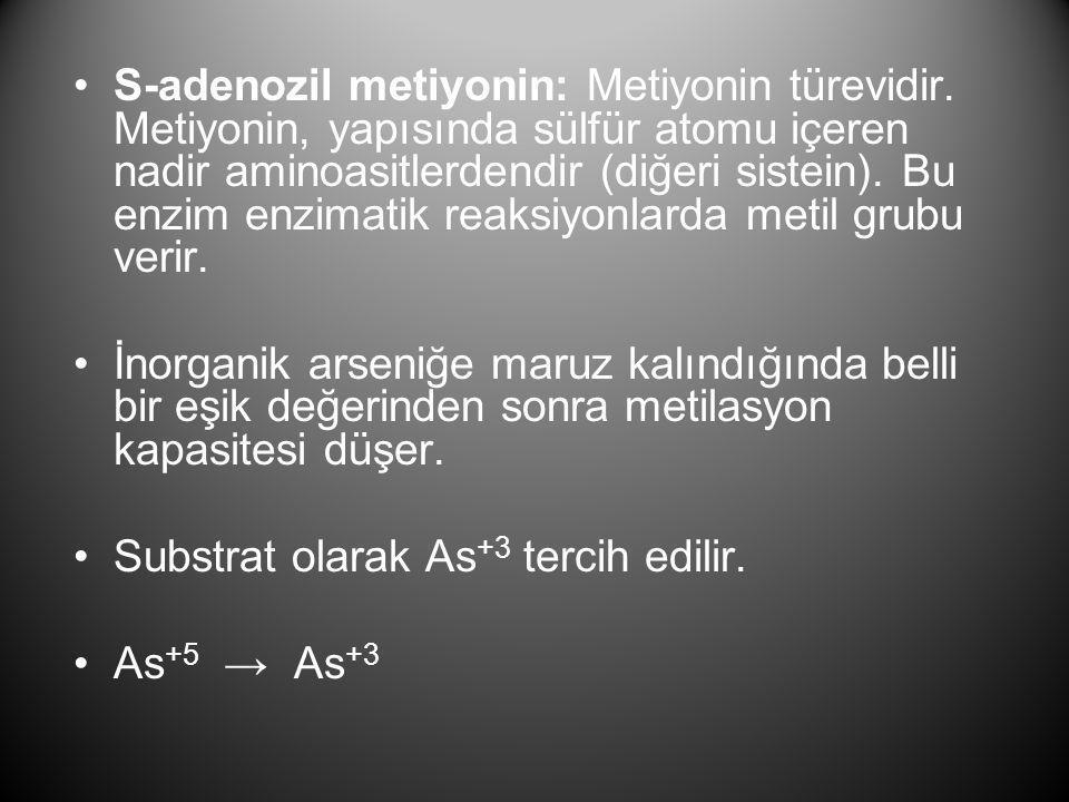 •S-adenozil metiyonin: Metiyonin türevidir. Metiyonin, yapısında sülfür atomu içeren nadir aminoasitlerdendir (diğeri sistein). Bu enzim enzimatik rea