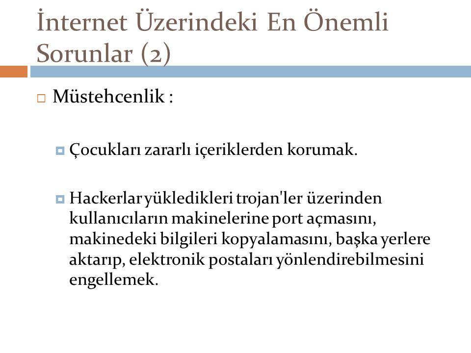 İnternet Üzerindeki En Önemli Sorunlar (2)  Müstehcenlik :  Çocukları zararlı içeriklerden korumak.  Hackerlar yükledikleri trojan'ler üzerinden ku