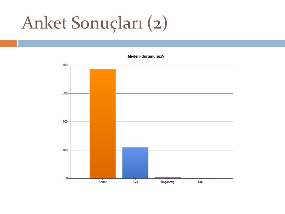 Anket Sonuçları (2)