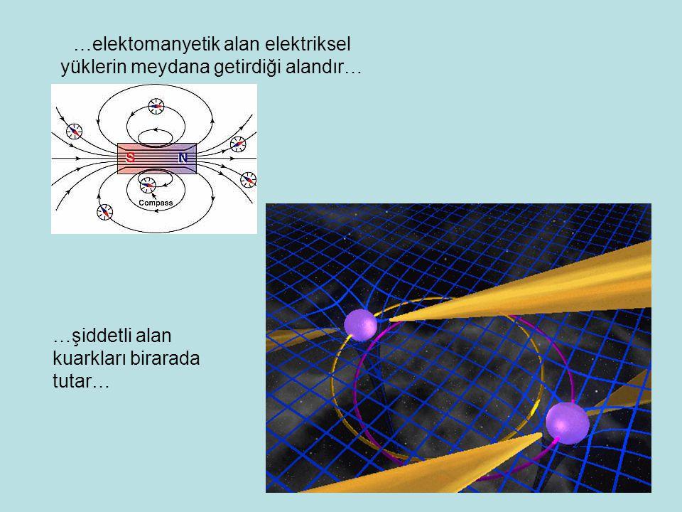 …elektomanyetik alan elektriksel yüklerin meydana getirdiği alandır… …şiddetli alan kuarkları birarada tutar…