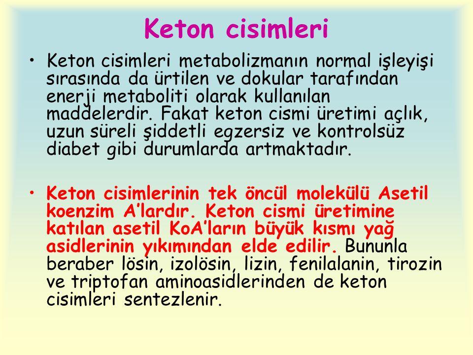 Keton cisimleri •Keton cisimleri metabolizmanın normal işleyişi sırasında da ürtilen ve dokular tarafından enerji metaboliti olarak kullanılan maddelerdir.