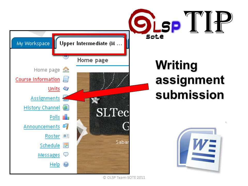 TIP © OLSP Team-SOTE 2011 Writing assignment submission