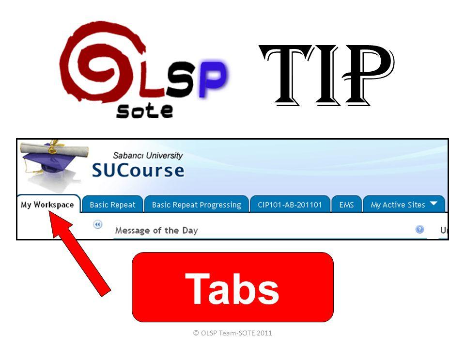 TIP © OLSP Team-SOTE 2011 Tabs