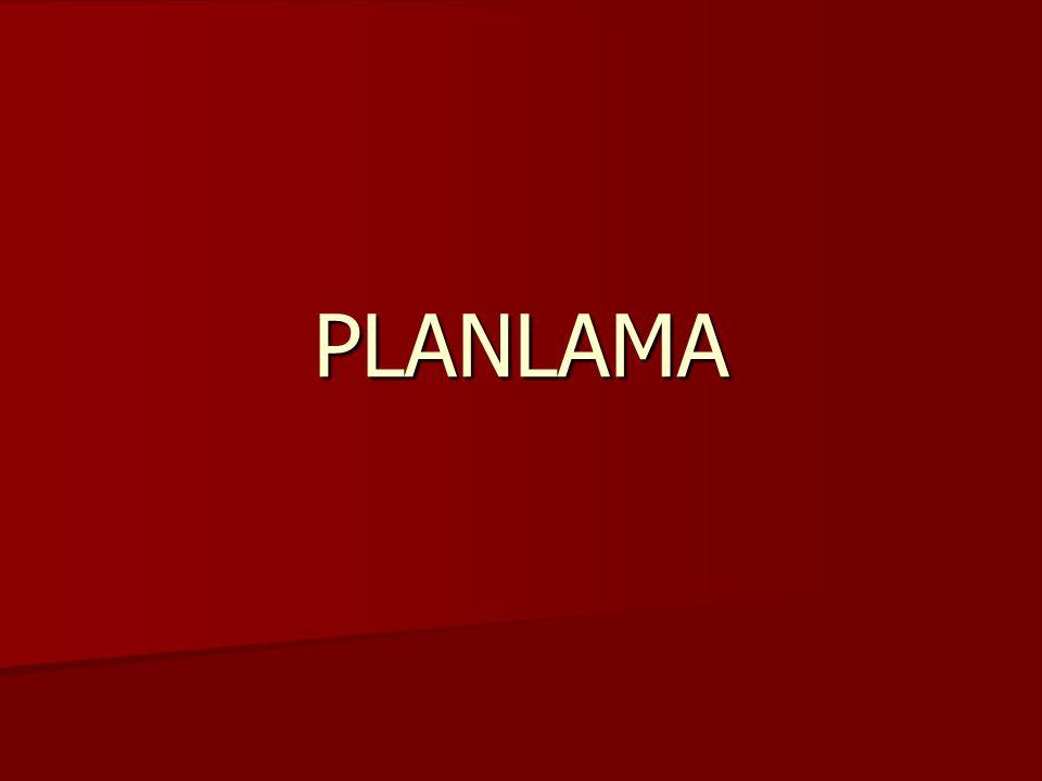 Planlama Süreci 3.