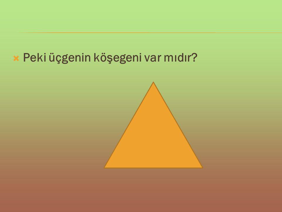  Peki üçgenin köşegeni var mıdır?