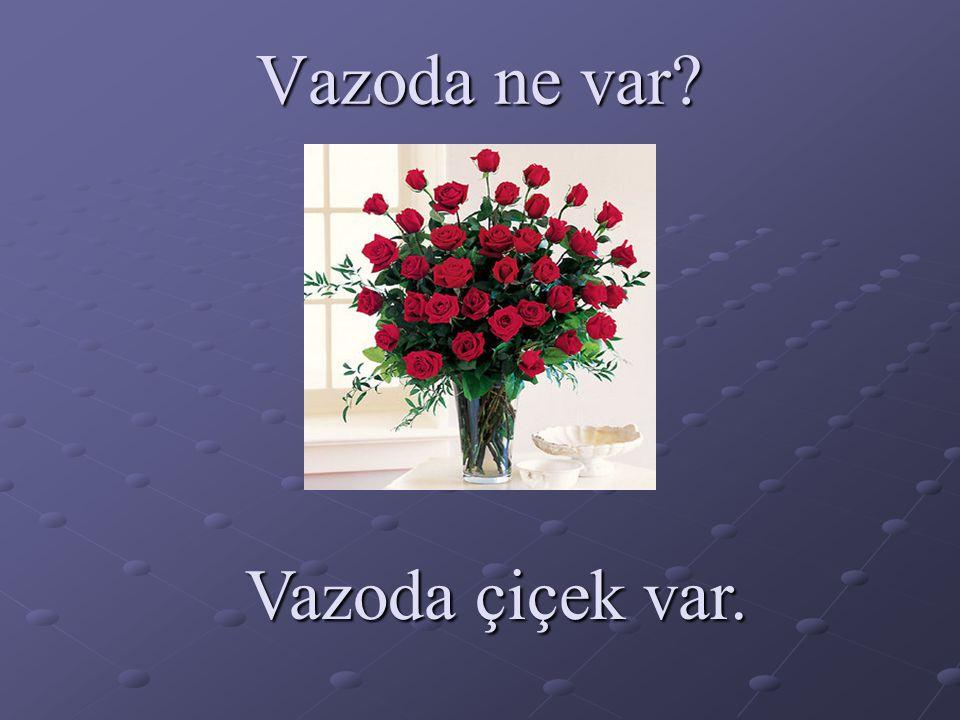 Vazoda ne var? Vazoda çiçek var.