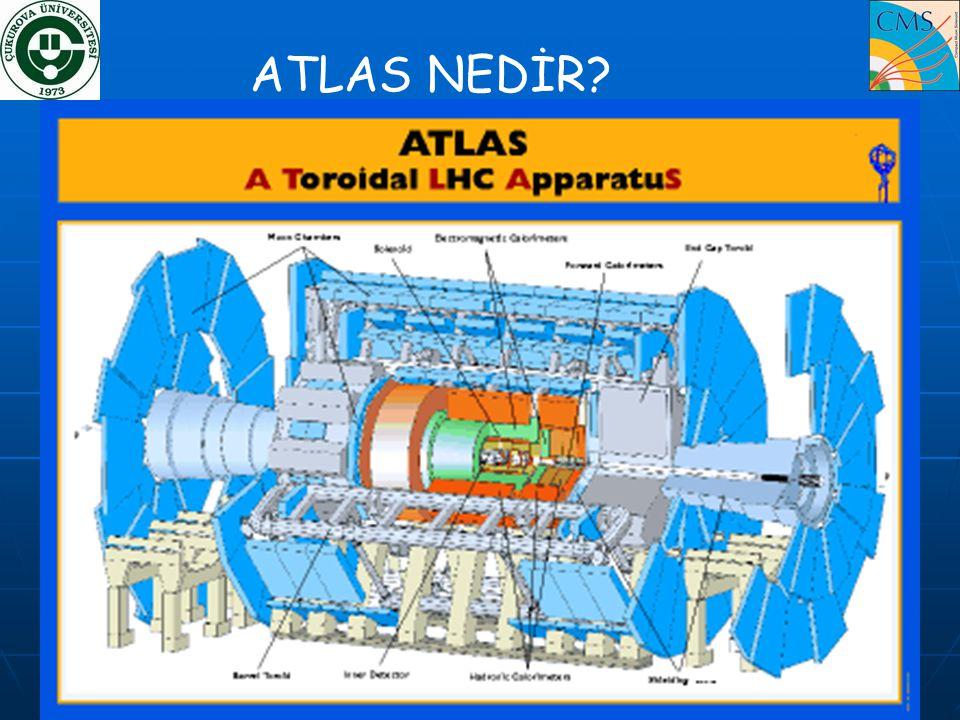 ATLAS NEDİR?