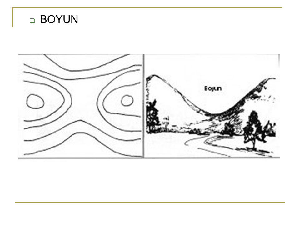  BOYUN