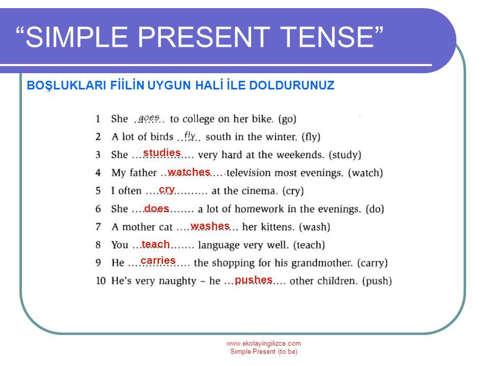"www.ekolayingilizce.com Simple Present (to be) ""SIMPLE PRESENT TENSE"" BOŞLUKLARI FİİLİN UYGUN HALİ İLE DOLDURUNUZ studies watches cry does washes teac"