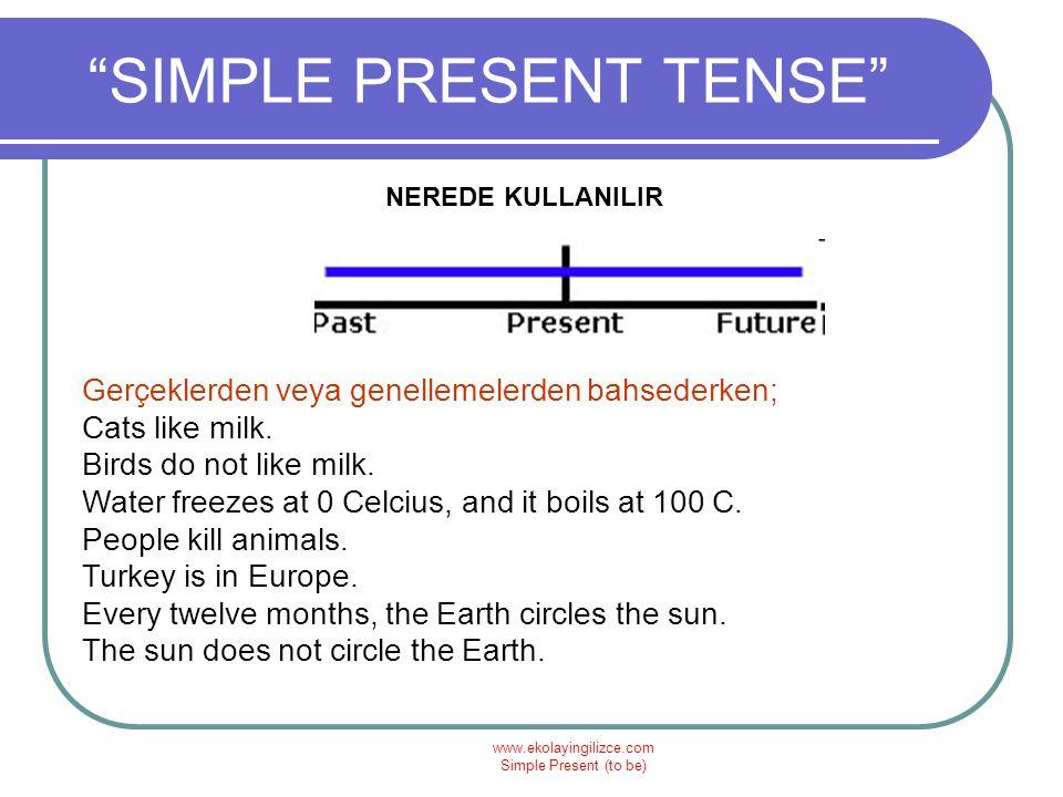 www.ekolayingilizce.com Simple Present (to be) SIMPLE PRESENT TENSE VERİLEN KELİMELERİ KULLANARAK SORU CÜMLELERİ YAPIN