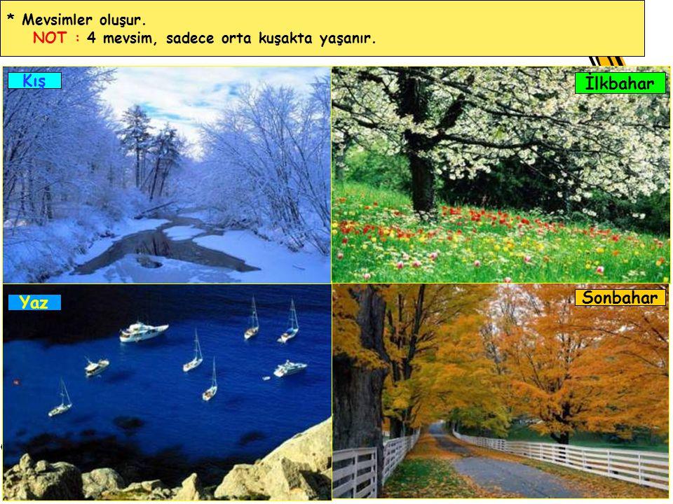 * Mevsimler oluşur. NOT : 4 mevsim, sadece orta kuşakta yaşanır. Kış Yaz İlkbahar Sonbahar
