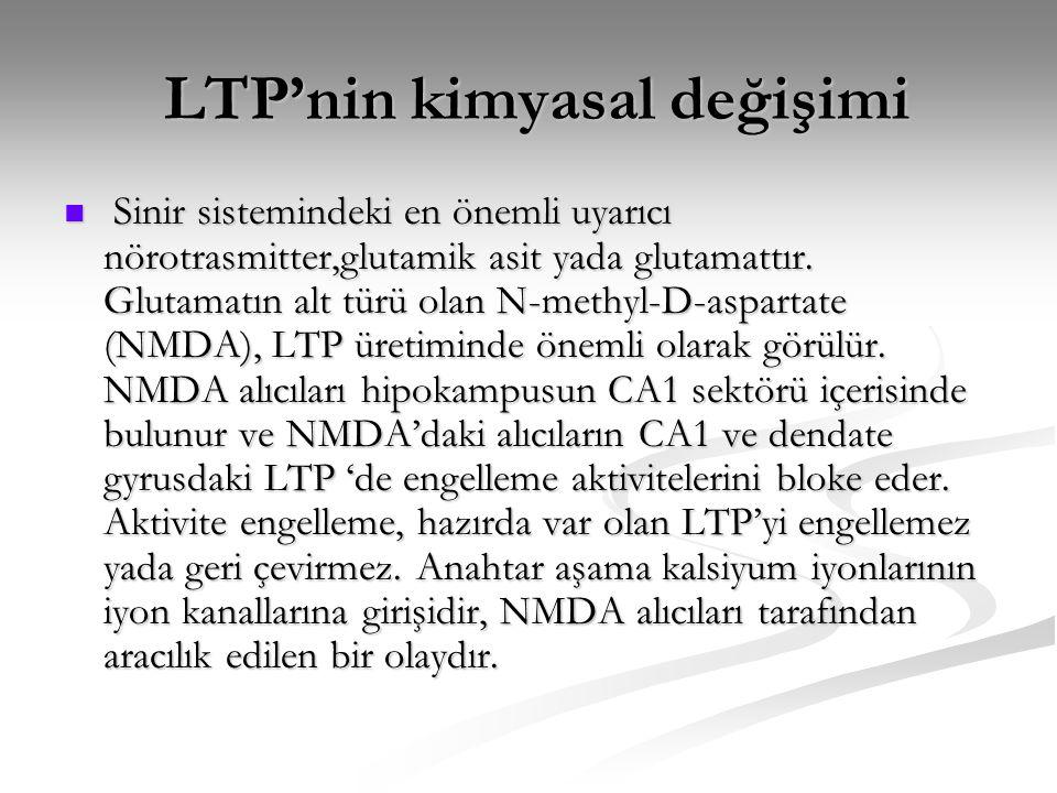 LTP'nin kimyasal değişimi LTP'nin kimyasal değişimi  Sinir sistemindeki en önemli uyarıcı nörotrasmitter,glutamik asit yada glutamattır. Glutamatın a