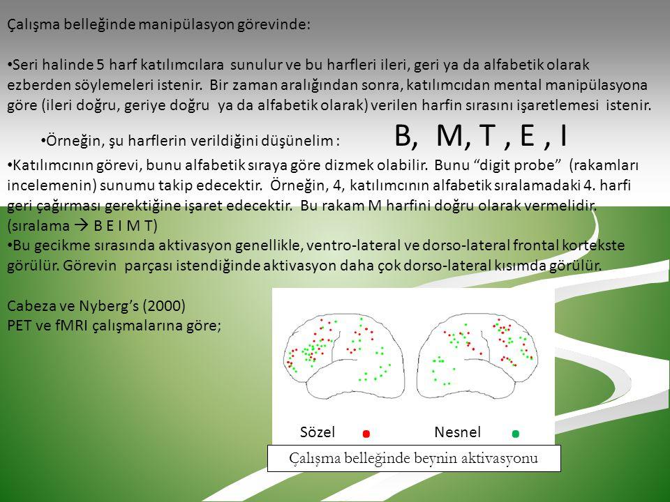 Çalışma belleğinde manipülasyon görevinde: • Seri halinde 5 harf katılımcılara sunulur ve bu harfleri ileri, geri ya da alfabetik olarak ezberden söyl