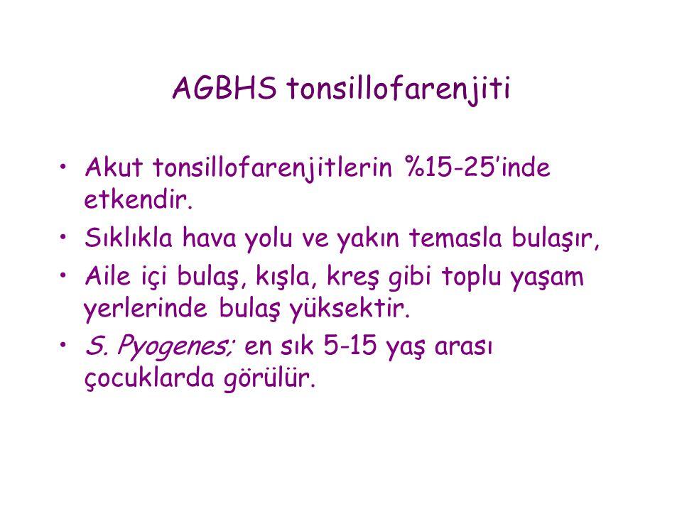 AGBHS tonsillofarenjiti •Akut tonsillofarenjitlerin %15-25'inde etkendir. •Sıklıkla hava yolu ve yakın temasla bulaşır, •Aile içi bulaş, kışla, kreş g