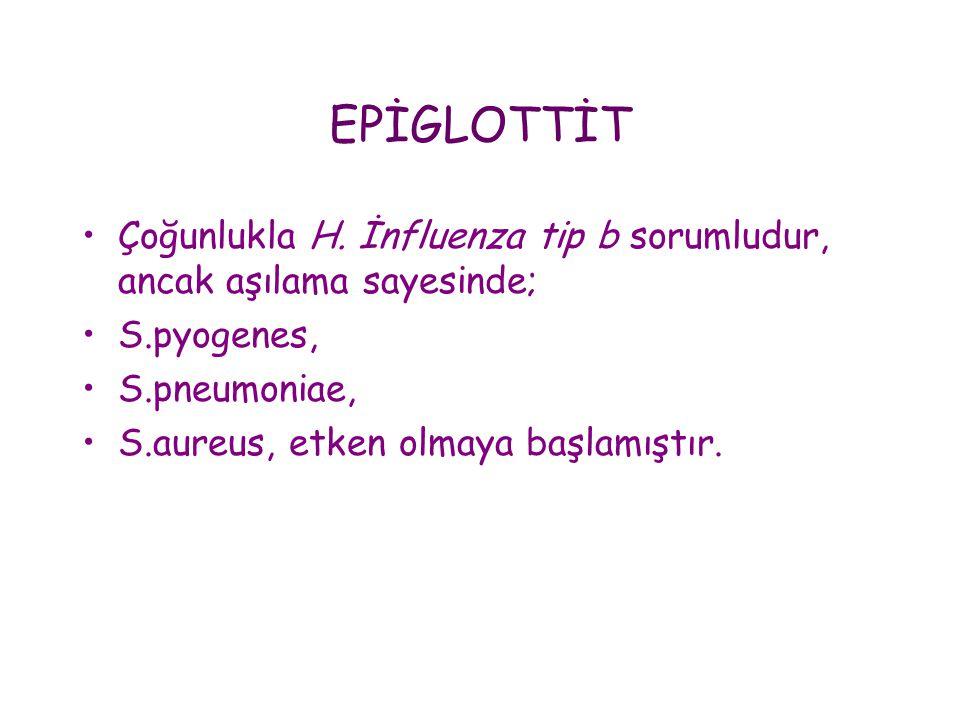 EPİGLOTTİT •Çoğunlukla H. İnfluenza tip b sorumludur, ancak aşılama sayesinde; •S.pyogenes, •S.pneumoniae, •S.aureus, etken olmaya başlamıştır.