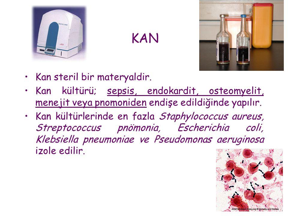 KAN •Kan steril bir materyaldir. •Kan kültürü; sepsis, endokardit, osteomyelit, menejit veya pnomoniden endişe edildiğinde yapılır. •Kan kültürlerinde