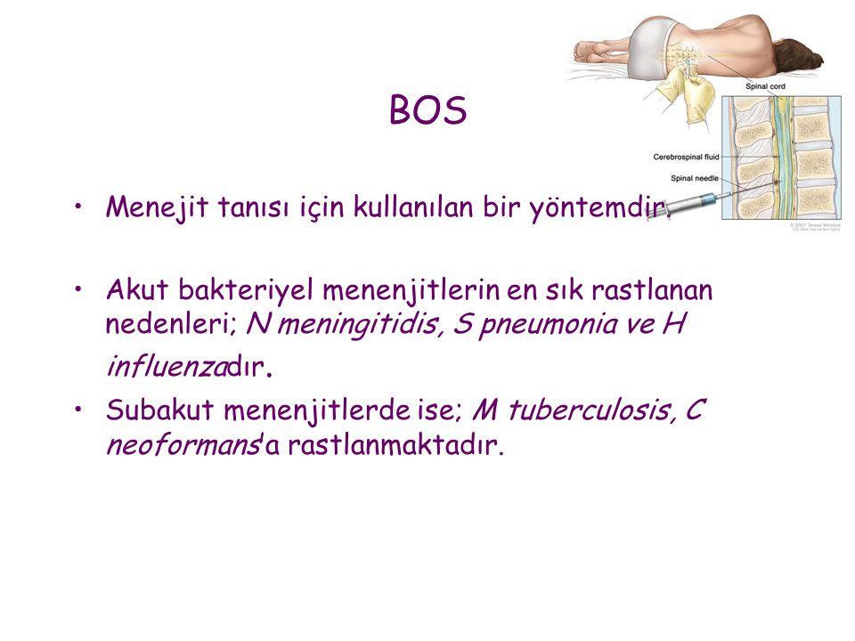 BOS •Menejit tanısı için kullanılan bir yöntemdir. •Akut bakteriyel menenjitlerin en sık rastlanan nedenleri; N meningitidis, S pneumonia ve H influen