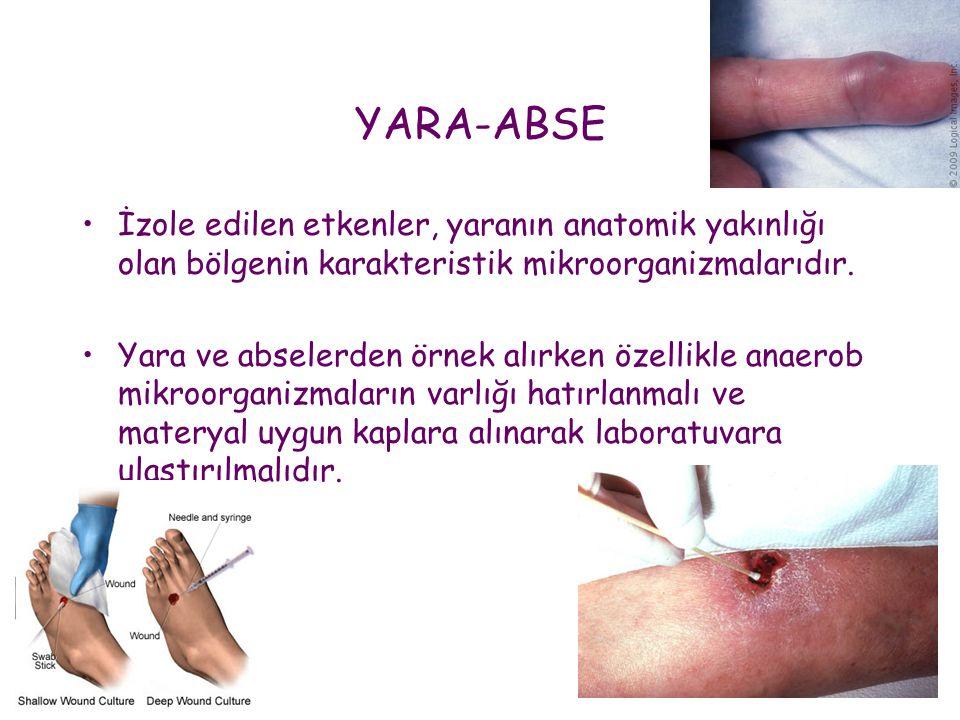 YARA-ABSE •İzole edilen etkenler, yaranın anatomik yakınlığı olan bölgenin karakteristik mikroorganizmalarıdır. •Yara ve abselerden örnek alırken özel