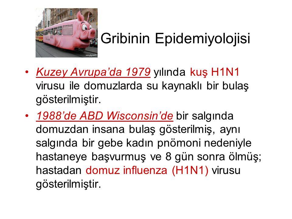 Gribinin Epidemiyolojisi •Kuzey Avrupa'da 1979 yılında kuş H1N1 virusu ile domuzlarda su kaynaklı bir bulaş gösterilmiştir. •1988'de ABD Wisconsin'de