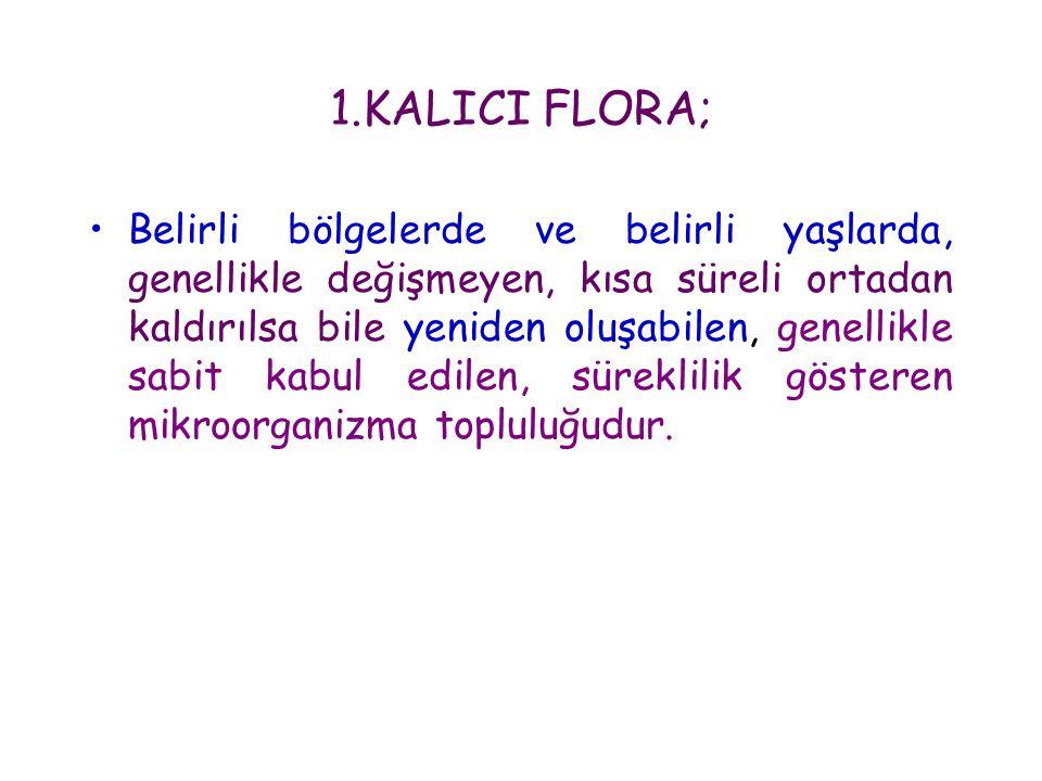 1.KALICI FLORA; •Belirli bölgelerde ve belirli yaşlarda, genellikle değişmeyen, kısa süreli ortadan kaldırılsa bile yeniden oluşabilen, genellikle sab