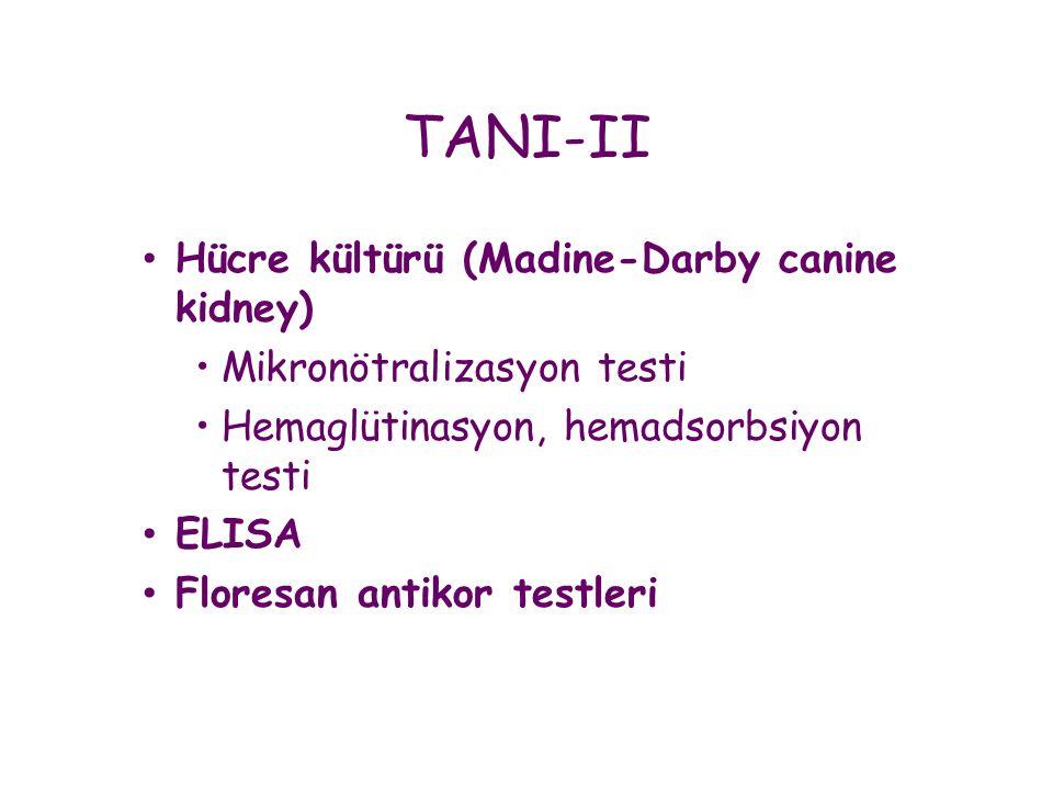 • Hücre kültürü (Madine-Darby canine kidney) •Mikronötralizasyon testi •Hemaglütinasyon, hemadsorbsiyon testi • ELISA • Floresan antikor testleri TANI