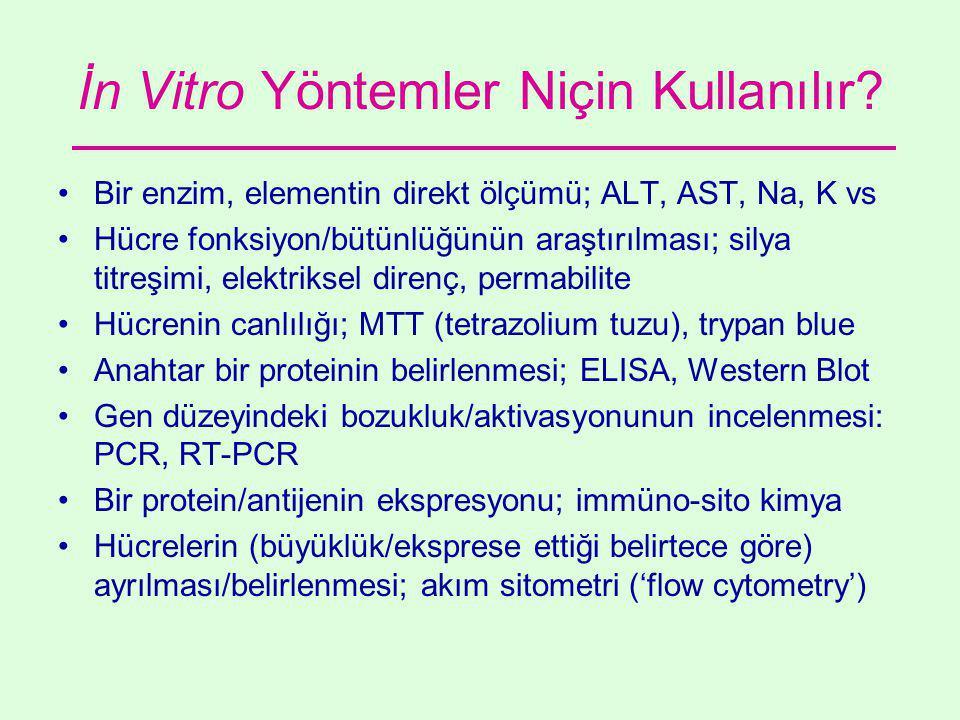 İn Vitro Yöntemler Niçin Kullanılır.