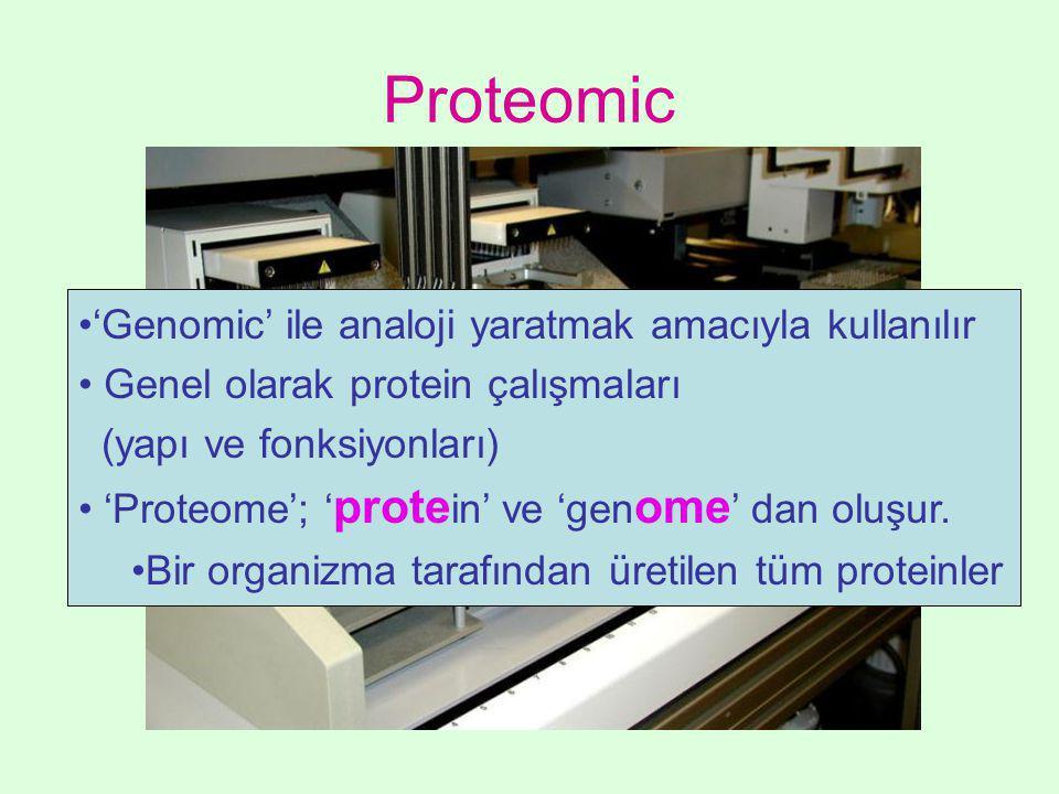 Proteomic •'Genomic' ile analoji yaratmak amacıyla kullanılır • Genel olarak protein çalışmaları (yapı ve fonksiyonları) • 'Proteome'; ' prote in' ve 'gen ome ' dan oluşur.