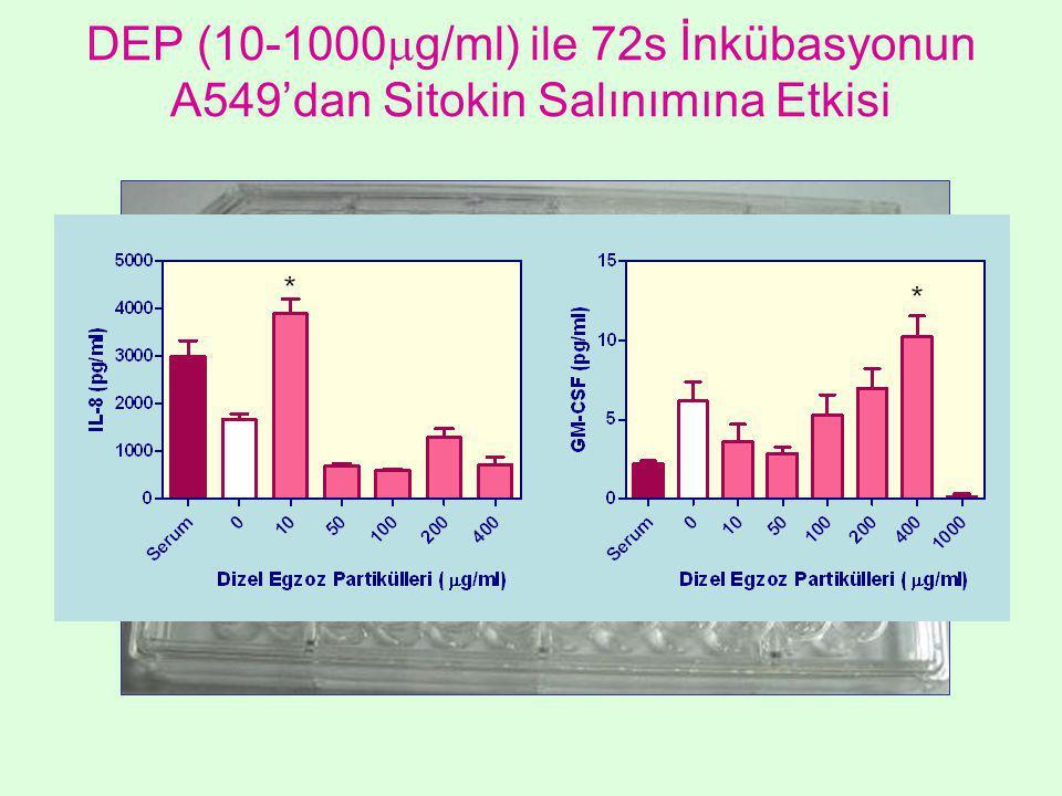 DEP (10-1000  g/ml) ile 72s İnkübasyonun A549'dan Sitokin Salınımına Etkisi