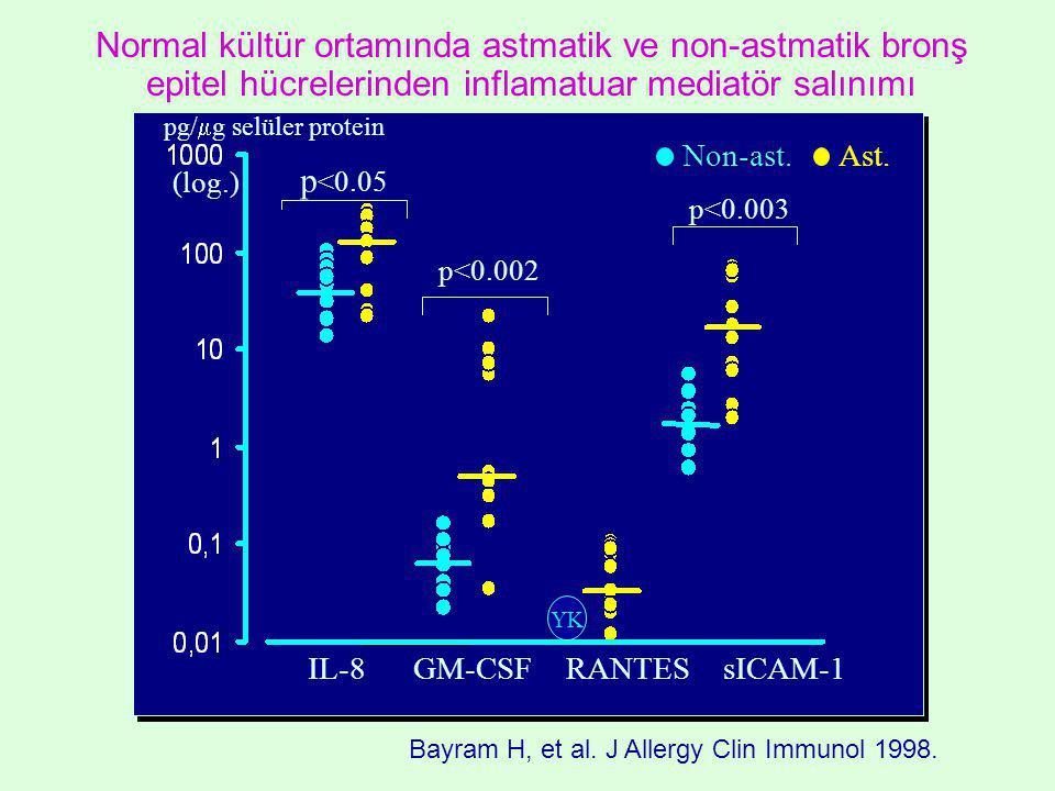 Normal kültür ortamında astmatik ve non-astmatik bronş epitel hücrelerinden inflamatuar mediatör salınımı IL-8 GM-CSF RANTES sICAM-1 p <0.05 p<0.002 p<0.003 pg/  g selüler protein YK Non-ast.Ast.
