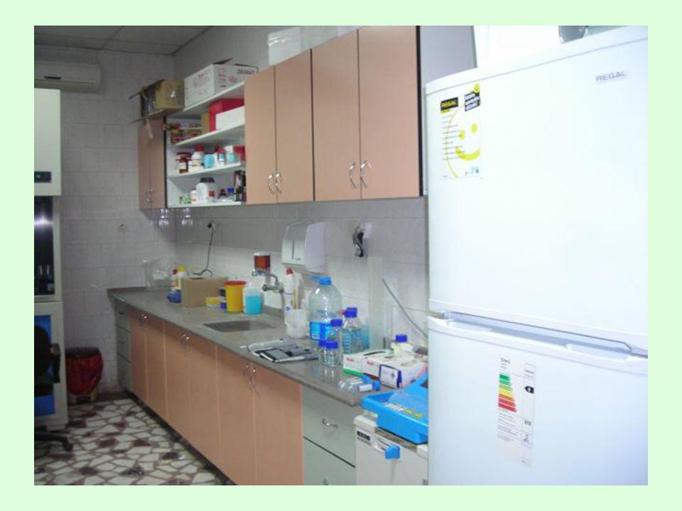 Western Blot (Immunoblot) •Doku homojenatı/ekstraktı, hücre •Spesifik proteini, düzeyini belirlemek