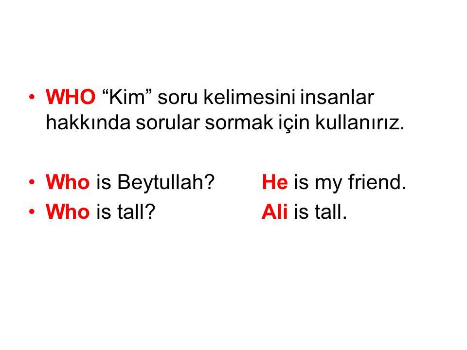 •WHO Kim soru kelimesini insanlar hakkında sorular sormak için kullanırız.