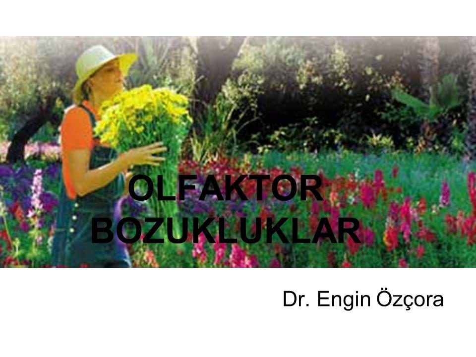 OLFAKTOR BOZUKLUKLAR Dr. Engin Özçora