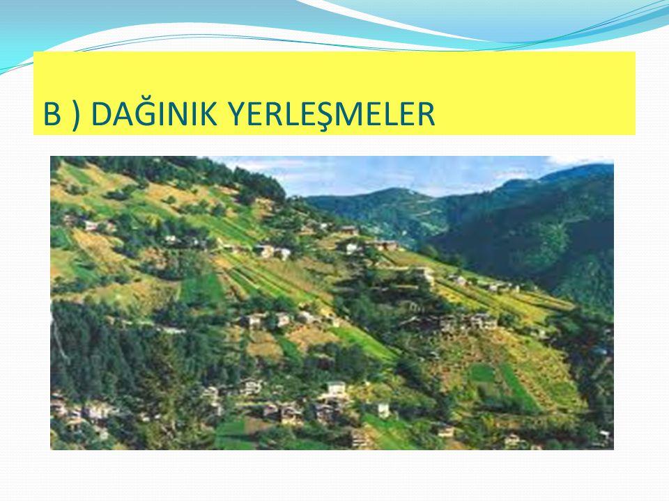  Köy  Mezra  Mahalle  Divan  Çiftlik DEVAMLI KIR YERLEŞMELERİ