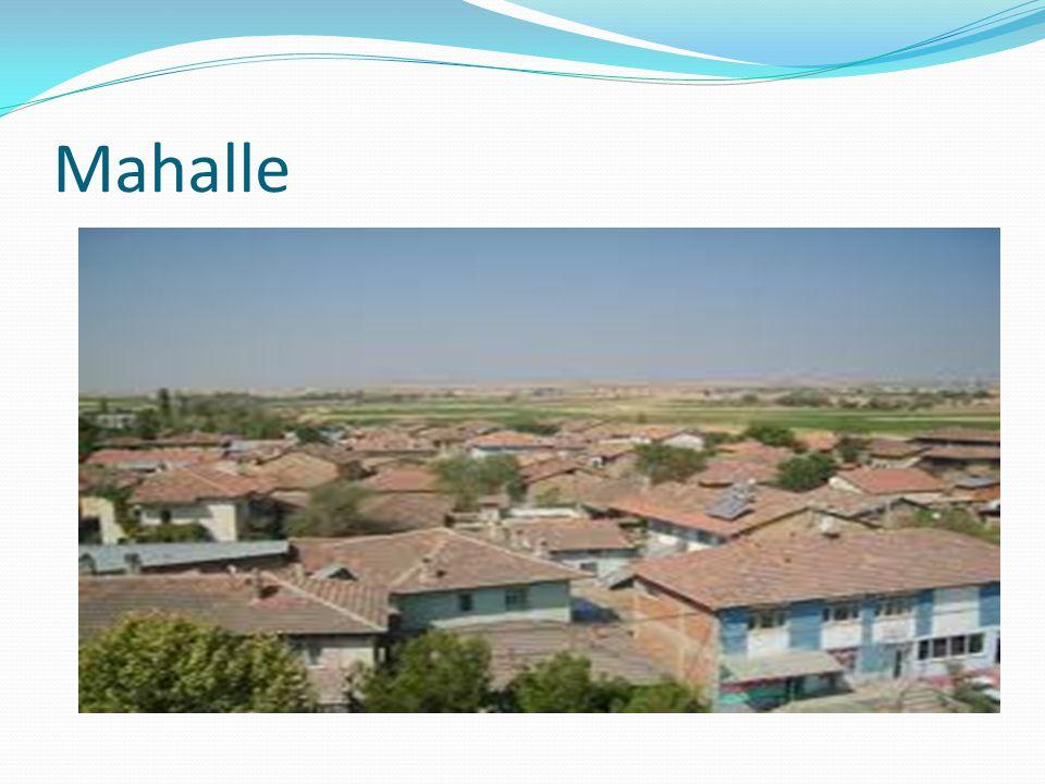  Divan Birbirinden uzakta kurulmuş olan ve birlikte bir köyü oluşturan mahallelere divan adı verilir.