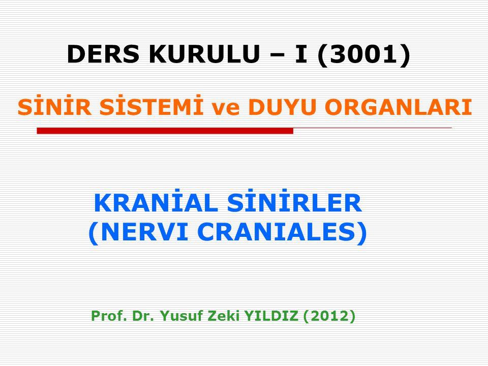 GSAYüz derisi, saçlı deri, ağız ve burun boşluğu, dilin 2/3 ön bölümü, paranazal sinüsler, konjunktiva, kulak zarı, dura mater, (propriosepsiyon) N.TRIGEMINUS - PERİFERİK DALLARI N.ophtalmicus (V1) SVEÇiğneme kasları, M.mylohyoideus + M.digastricus venter ant., M.tensor tympani, M.tensor veli palatini.