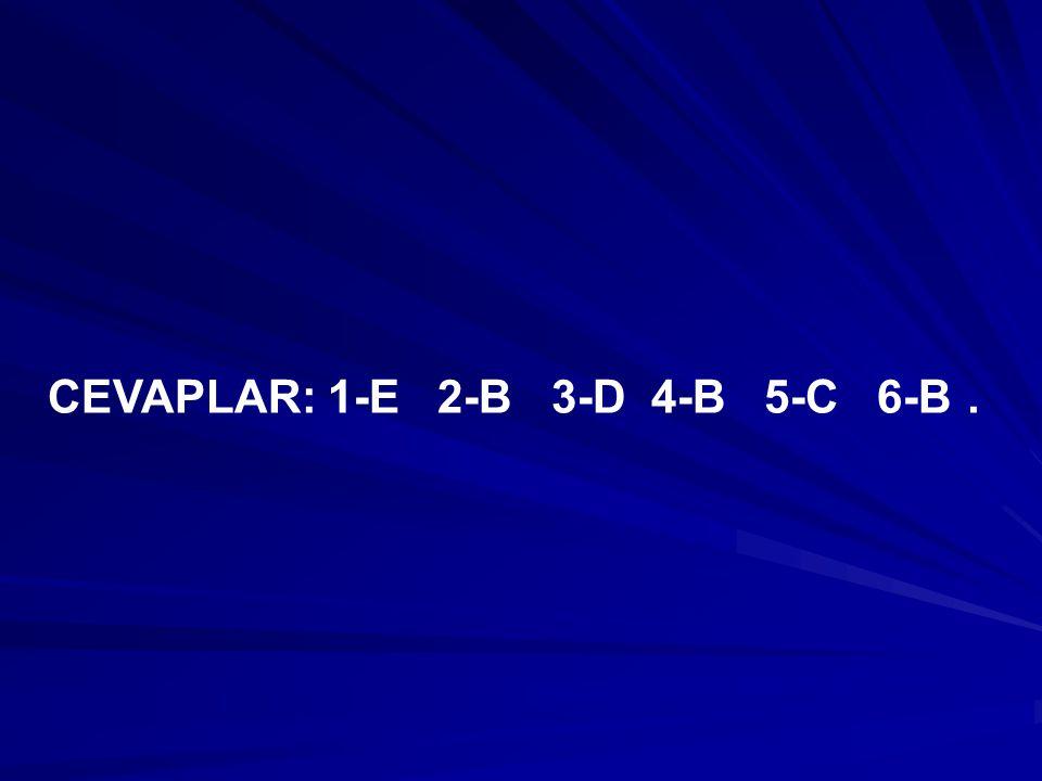CEVAPLAR: 1-E 2-B 3-D 4-B 5-C 6-B.