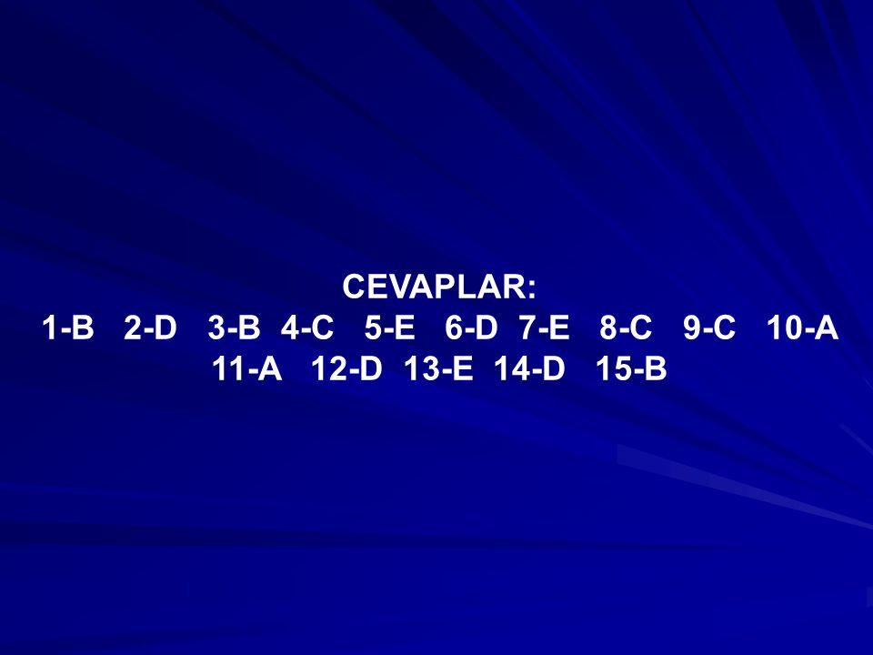 CEVAPLAR: 1-B 2-D 3-B 4-C 5-E 6-D 7-E 8-C 9-C 10-A 11-A 12-D 13-E 14-D 15-B