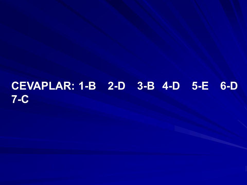 CEVAPLAR: 1-B 2-D 3-B 4-D 5-E 6-D 7-C